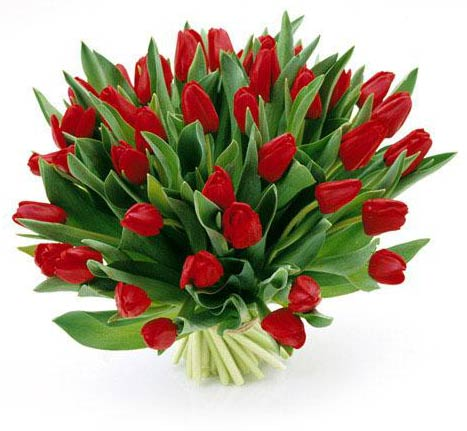 http://www.russianaustria.com/forum/images/8_march_valentine-flowers_russian_austria.jpg